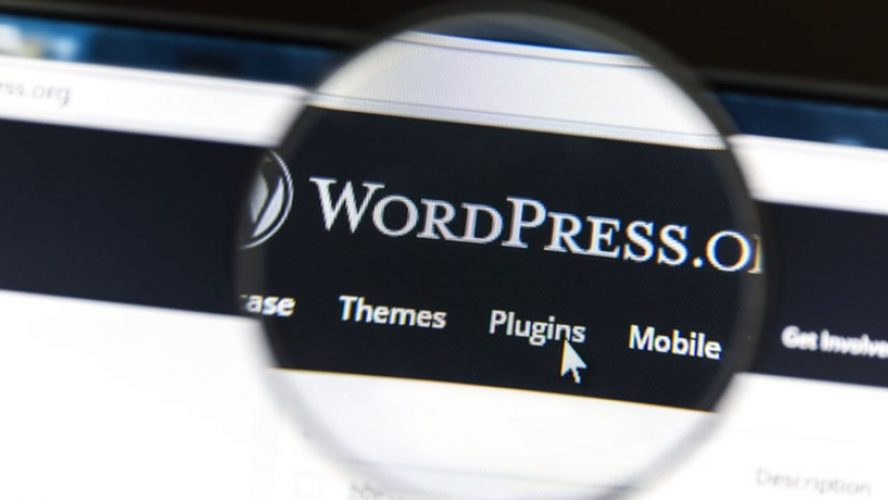WordPress 5.5 Update: What Are the Main Changes You Need to Know About?